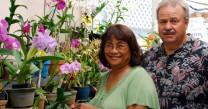 Orchid Alley Kauai