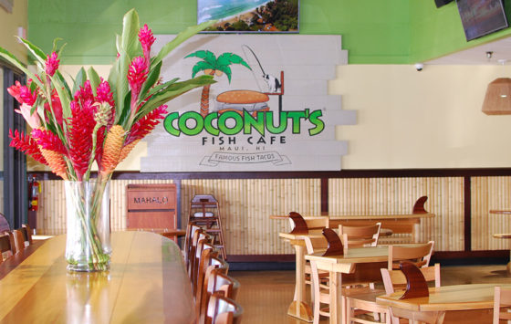 coconuts fish cafe
